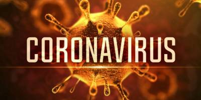 Small-Business Survival Plan In A Corona Virus Economy